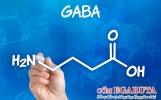 GABA và những lợi ích nổi trội với trẻ tăng động giảm chú ý
